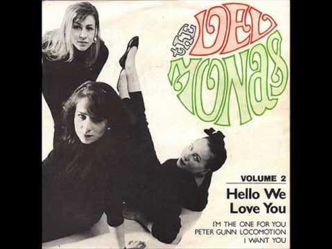 The Delmonas - Hello We Love You