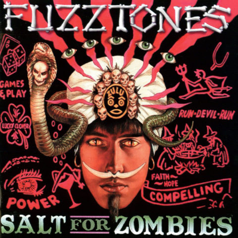 Chaputa! - Fuzztones - Salt For Zombies LP